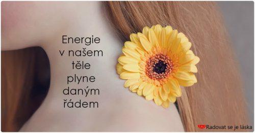 Energetická růžice