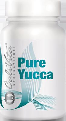 Pure Yucca: Detoxikace přírodními saponiny
