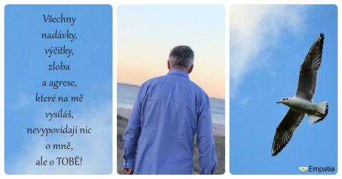 Léčba našeho žlučníku a jater, naší nespokojenosti a zatvrzelosti krok za krokem – krok VI.