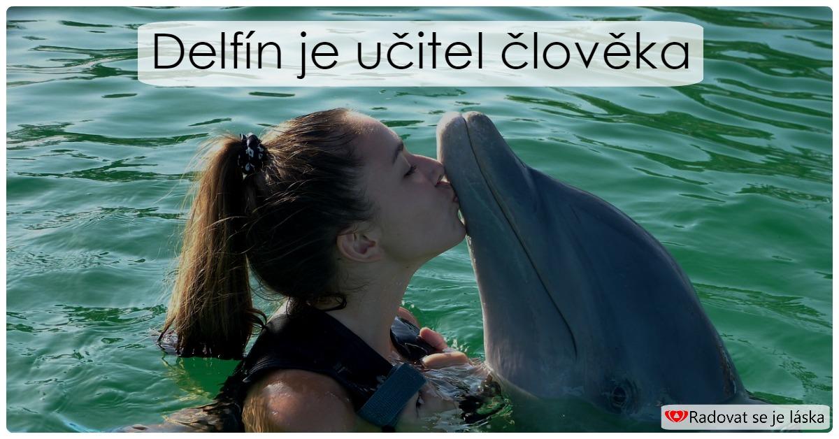 Delfín jako učitel člověka