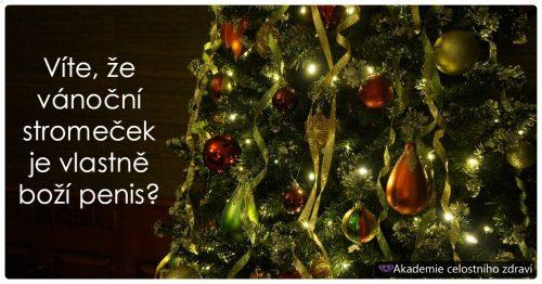 Poselství vánočních svátků