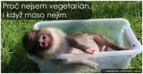 Proč nejsem vegetarián, i když…