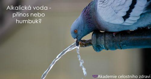 Alkalická voda: přínosná nebo pouze humbuk?